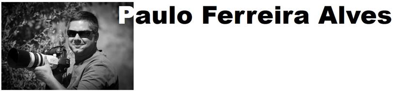 Tag Paulo Ferreira Alves